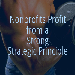 Nonprofits Profit from a Strong Strategic Principle