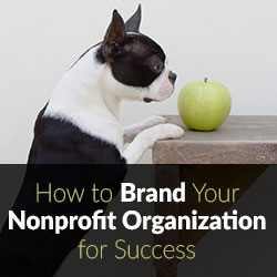 Nonprofit Branding and Marketing Advice
